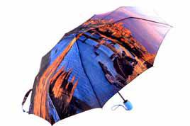 . Женский зонт Popular. Арт.88228