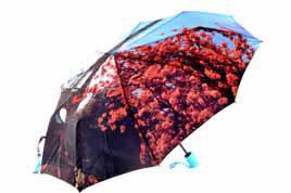 . Женский зонт Popular. Арт.88230